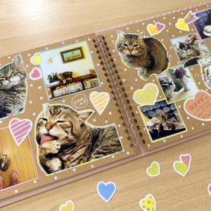 ペットの可愛い写真を集める思い出アルバム