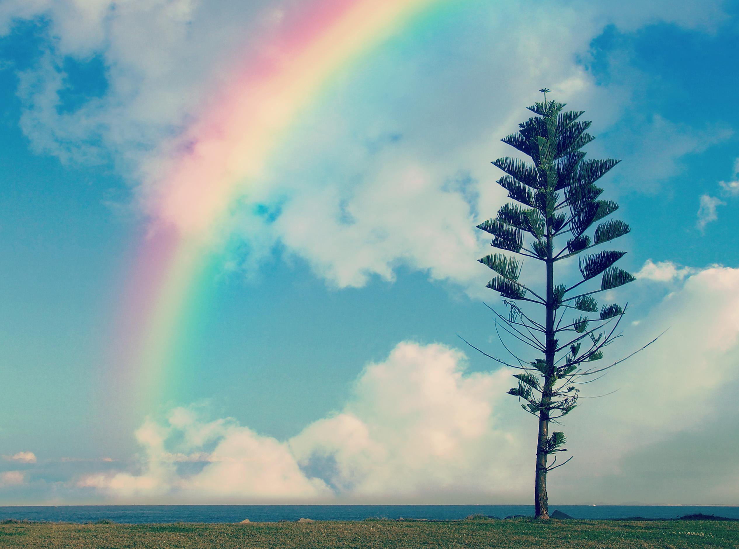 教えたくなる虹が現れるために必要な3つの秘密知っていますか