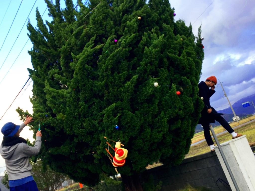 小浜 クリスマスツリー 電飾 飾り付け