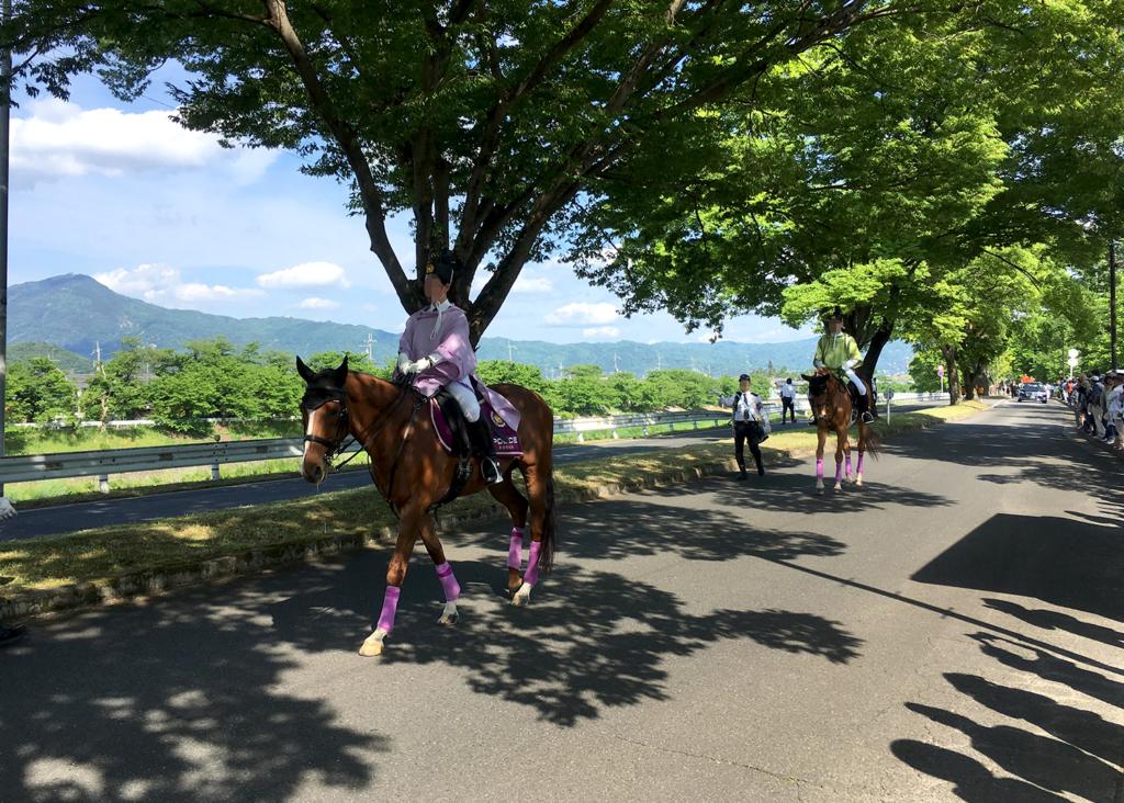 京都府警察の平安騎馬隊